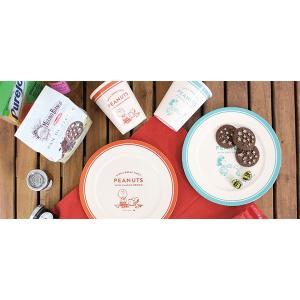【ポイント最大26倍】プレート 21cm スヌーピー ルーシー メラミン製 食器 キャラクター ( メラミンプレート お皿 子供用食器 キッズ用食器 子供 )|colorfulbox|04
