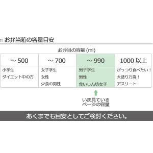 お弁当箱 1段 男子 750ml コンテナランチボックス ランチチャイム ( 弁当箱 おしゃれ ランチボックス )|colorfulbox|15