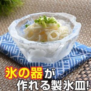 製氷皿 アイスディッシュメーカー delijoy デリジョイ氷のうつわ