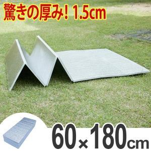 レジャーシート 極厚 15mm 折りたたみ式 レジャーマット 幅 60cm 厚手 ( アルミマット マット クッション ピクニックシート )|colorfulbox