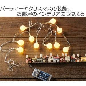 イルミネーションライト レス イヴェール LED10球 フロストボールライト ( 電飾 LED 飾り )|colorfulbox|02