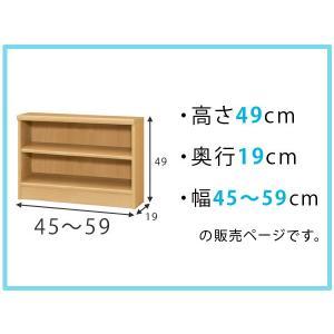 オーダー本棚 壁面収納 オーダーラック 標準棚板タイプ 幅45-59cm 奥行19cm 高さ49cm ( 本棚 オーダー オーダーメイド 収納棚 )|colorfulbox|02