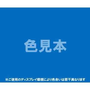 医薬品、医薬部外品及び化粧品用法定色素青色1号 ブリリアントブルーFCF 1kg  青1 医薬品 化粧品 着色 ダイワ化成 カラーマーケット