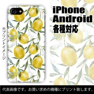 富士通 らくらくスマートフォン 各種対応 ハードケース全面プリント らくらくホン 在庫限定特価 レモン柄 ボタニカル colorstage