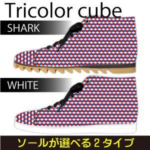 スニーカー ハイカット トリコロールキューブ Model:メンズSN-H17SS-22|colorstage
