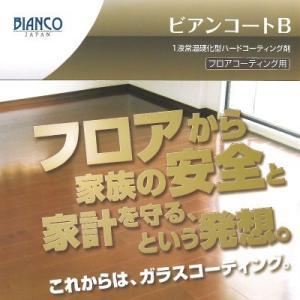 [Y] 株式会社ビアンコジャパン ビアンコートB パーフェクトセット つやけし [100ml] colour-harmony