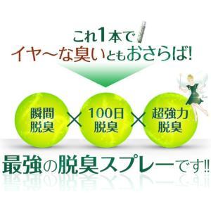 [Y] フェアリール FAIRIEL [150ml] 光触媒コーティングスプレー 消臭効果 抗菌効果 防臭効果 防カビ効果|colour-harmony|02