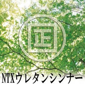 [Y] 大阪塗料 NTXウレタンシンナー#100 [4L]NTXウルトラック895・ノントルエン・ノンキシレン|colour-harmony