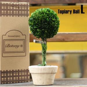 DULTON ダルトン ボックスウッドトピアリー「ボール」 CH07-G297 サイズ:L 【インテ...