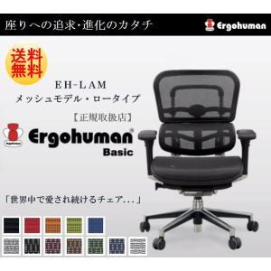 Ergohuman Basic エルゴヒューマン ベーシック EH-LAM オフィスチェア パソコンチェア ロータイプ メッシュモデル 人気 おしゃれの写真