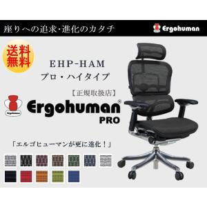 Ergohuman Pro エルゴヒューマン プロ EHP‐HAM オフィスチェア パソコンチェア ...