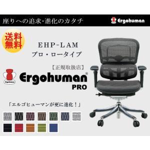 Ergohuman Pro エルゴヒューマン プロ EHP-LAM オフィスチェア パソコンチェア ...