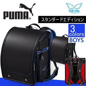 商品番号:PB-19GE ●A4フラットファイル収納サイズ(内寸)  高さ約31cm×幅約23.5c...