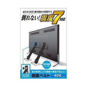 エレコム TV用耐震ベルト/〜40V用/ネジどめタイプ(VESA穴)/2本入 TS-005N メーカー在庫品