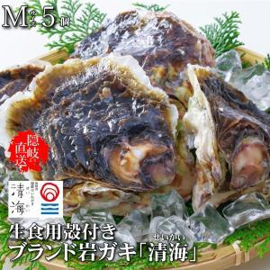 隠岐 ブランド いわがき 清海 Mサイズ 250g〜300g 5個セット 殻付き 岩牡蠣 生食用 専...