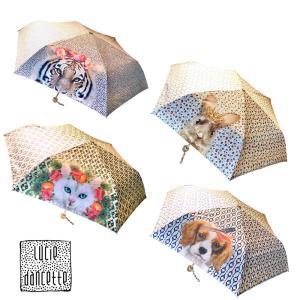 傘 晴雨兼用 ルーシーダンセット 折り畳み傘 日傘 レッセルーシーフェール リュシーダンセット|conceptstore