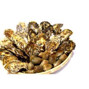 マルえもん殻付き牡蠣 L-size 20個入 & 殻付きあさり 500g セット|conchiglie