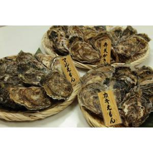 厚岸産殻牡蠣 3種食べ比べセット conchiglie