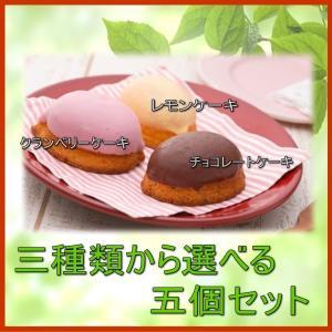 選べるレモンケーキ/レモン・クランベリー・チョコ(1箱)|conditorei-toyodo