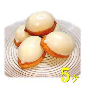 レモンケーキ 5個 ケーキ スイーツ 焼き菓子 お菓子 レモン 富士山 プレゼント ギフト お祝い 内祝 お返し お礼 手土産 お土産 詰合せ|conditorei-toyodo