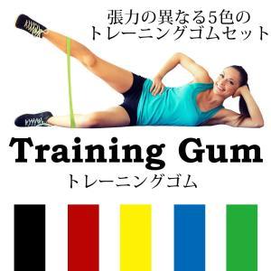 トレーニングチューブ エクササイズバンド ループバンド 強度別5本セット 収納袋付き 筋トレ フィットネス ダイエット|confianceshop