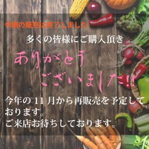 【送料無料 期間限定11月から2月まで】7品目以上!有機野菜おまかせセット