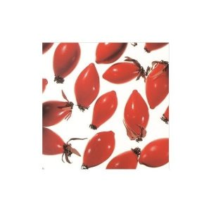 【最大2,000円クーポン】ローズヒップオイル・クリア精製25ml(植物油) 生活の木 conome
