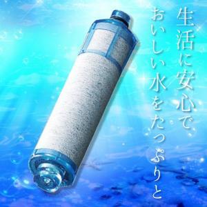 LIXIL INAX オールインワン浄水栓 交換用カートリッジ 高塩素除去タイプ 1本[JF-21] あすつく conpaneya