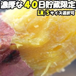 さつまいも 紅はるか 熟成 3.5kg 送料無料 大分 芦刈農産 ねっとり 濃厚 サツマイモ 蔵出し べにはるか l〜m サイズ 贈答用 お歳暮 ギフト ホクホク さつま芋|cooksanchoku