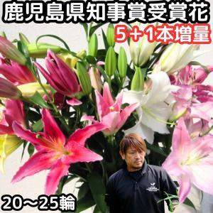 花 ユリ 花束 大輪 ギフト ミックス 5本+1本 増量 20〜25輪 生花 百合 ゆり MIX ユ...