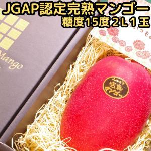 遅れてごめんね マンゴー 母の日 ギフト 宮崎 完熟マンゴー 赤秀 糖度15度 2lサイズ 1玉 化...