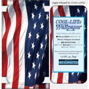 iPhone アイホン アイフォン 5 スキン シール  カバー COOL-LIFEsデザイン日本製 us_flag|cool-lifes