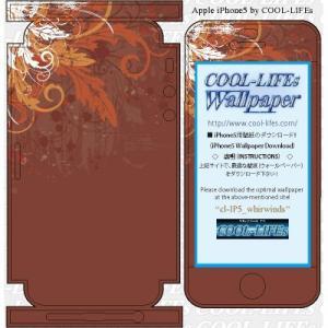 iPhone アイホン アイフォン 5 スキン シール  カバー COOL-LIFEsデザイン日本製 whirwinds|cool-lifes