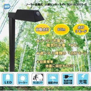 LEDガーデンセンサーライト ソーラー充電式 3モード点灯 防水機能 地面設置型 人感センサー付き ...