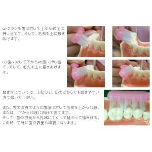 【送料無料】MTB歯ブラシ 歯磨き粉を使わない 歯周病予防 虫歯予防 口臭予防 【5本セット】 coolbikers 04