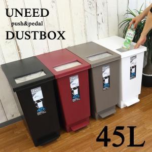 プッシュ&ペダル ダストボックス UNEED ユニード 45L ゴミ箱 ごみ箱 おしゃれ 新生活 2way ふた付き シンプル ワンタッチ|coolzon