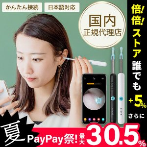 耳かき カメラ付き iPhone対応 LEDライト付き スコープ 充電式 子供 耳掃除 耳垢 カメラ...