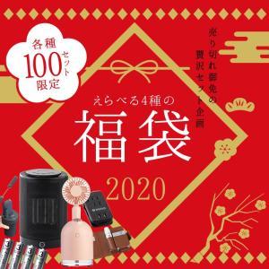 福袋 2020 卓上加湿器 大容量モバイルバッテリー ファンヒーター ワイヤレスイヤホン アルカリ乾...