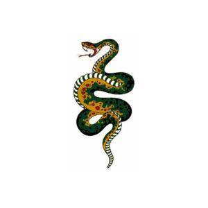 タトゥーシール 小蛇|coscommu