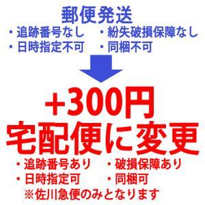 その他 郵便発送から宅配便に変更します/300円|cosme-nana