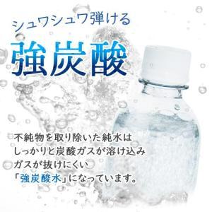 強炭酸水 500ml×24本入 ノンラベルのECOペットボトル cosmeboxオリジナル 即出荷|cosmebox|05