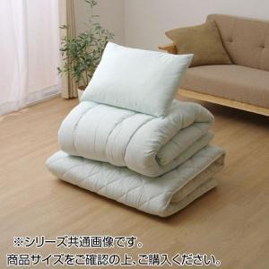 寝具3点セット 抗菌防臭 アレル物質吸着 『ヌード アレルプルーフ(R)』 シングルサイズ 6685530|costsaver