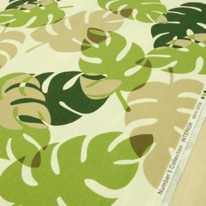 生地 ハワイアン柄 モンステラ オックス 布 布地 緑 ファブリック W巾 広巾(150cm幅)手芸|cottonhouse-cecile