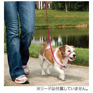 【パッケージ無し】ジェントルリーダー単品  PetSafe(旧Premier社)の引張り防止ヘッドカラー 小型犬、中型犬、大型犬 送料無料 countryfield 02