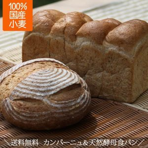 天然酵母 全粒粉食パン 2斤 全粒粉カンパーニュ 天然酵母パン 詰め合わせセット