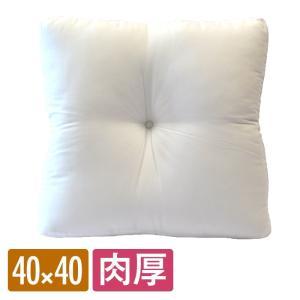 クッション 中身  40×40cm  ヌード シート 単品 洗える ゆるりら|coyoli