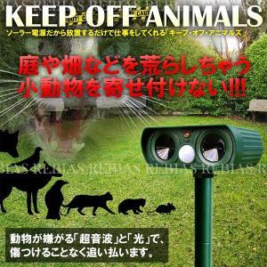 ソーラー 害獣 駆除 超音波 ネコ カラス ネズミ もぐら アニマル 小動物 KEEP OFF ANIMAL|cpmania