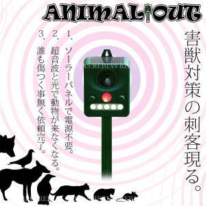ソーラー 害獣 駆除 超音波 アニマル アウト ネコ カラス ネズミ もぐら 壁掛け 小動物 ANIMAL OUT|cpmania