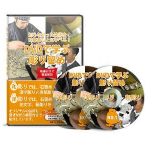 DVDで解説 わかりやすい彫り留め技法