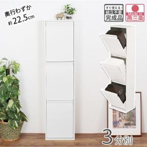 3分別 スリム スチール ダストボックス ダンパー付 薄型 完成品 縦型 3段の商品画像|ナビ